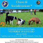 SUMMERCLASS – CLASSE DI SOCIALIZZAZIONE® 20 LUGLIO H. 19:00