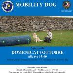 MOBILITYDOG® da DOMENICA 14 OTTOBRE