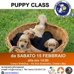 PUPPYCLASS 2.0 – DA SABATO 15 FEBBRAIO 2020 – CUCCIOLI ALLA RISCOSSA